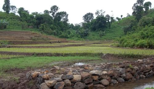 East Garo Hills Image-26